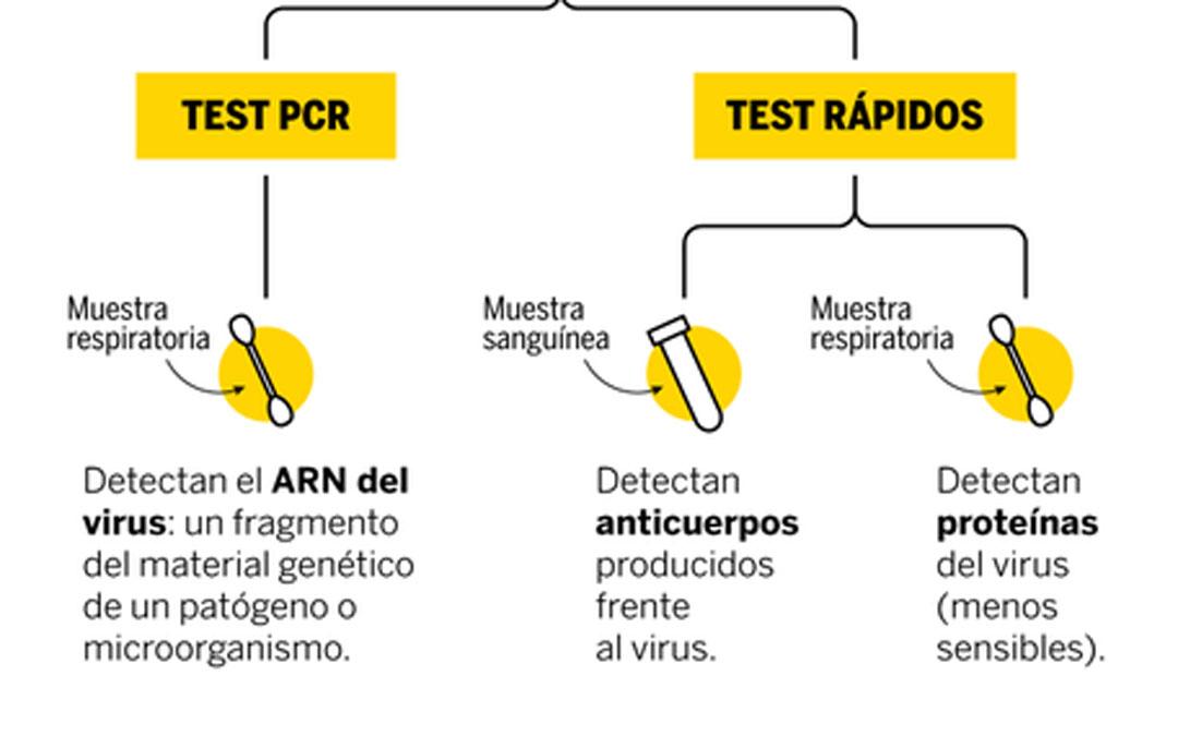 Protocolo del Ministerio para las empresas: mejor PCR que test rápidos